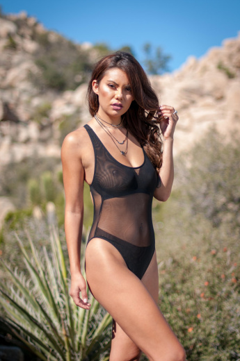Black Sheer Mesh Cross Back One Piece Swimsuit
